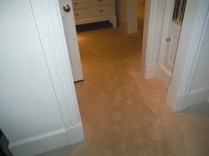 Water Damage Wilmer Wet Carpet