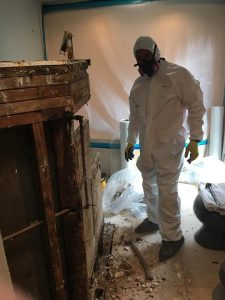A Repair Tech Conducting Water Cleanup And Mold Removal